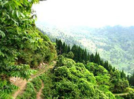 North india tours packages prompttravels