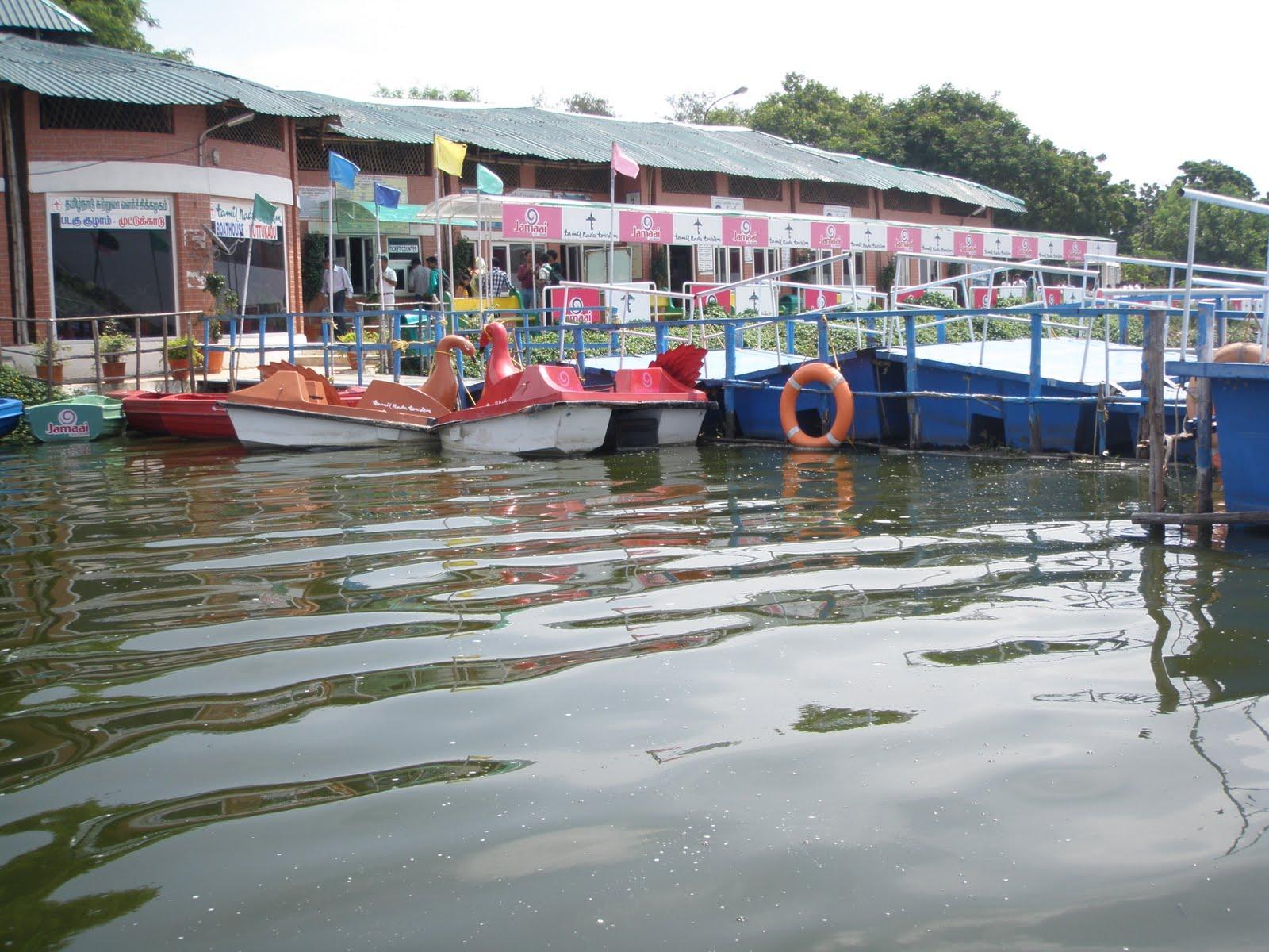 muttukadu-backwaters