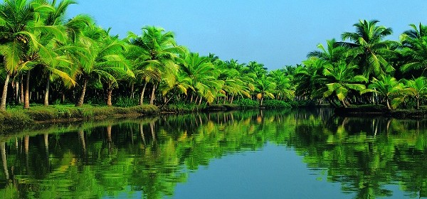 Most Romantic Kerala- Honeymoon tour packages|Romantic things to do