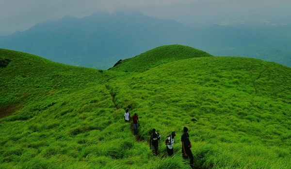 wayanad-tour-packages