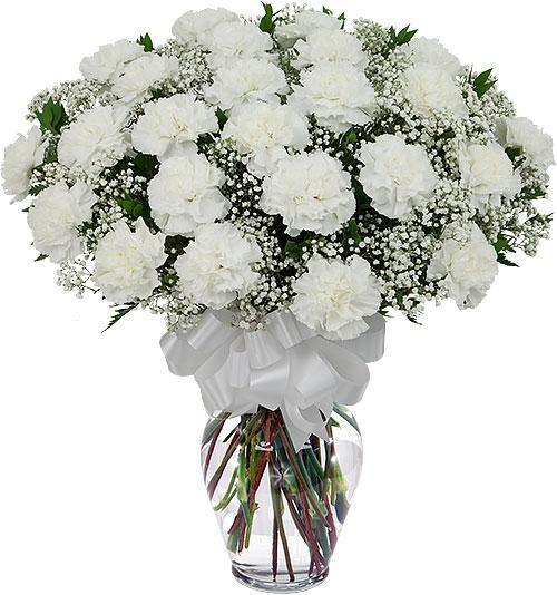 white-carnation