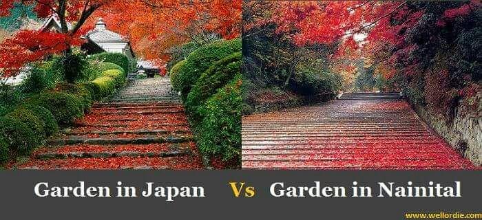 japan-vs-nainital