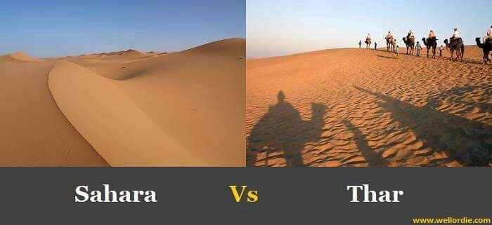 sahara-vs-thar
