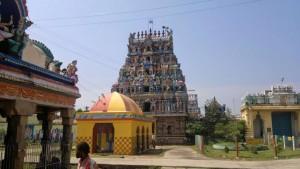 kayarohanaswami-temple-nagapattinam-prompt-travels-chennai1