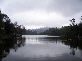 kodai tour package