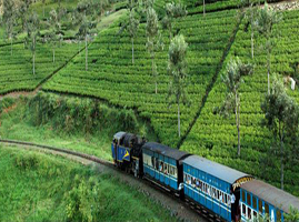 weekend kerala tour package