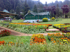 weekend ooty package